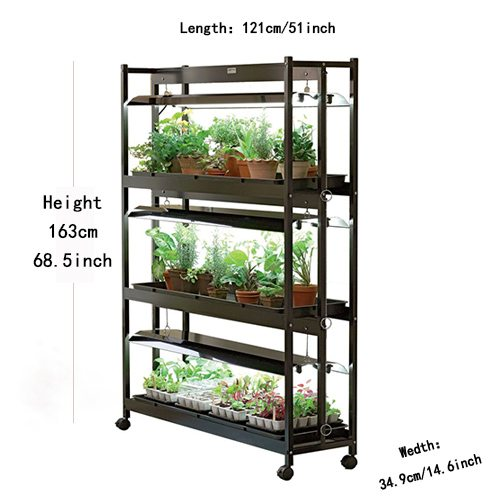three shelves of high intensity grow lights featuring succulents and orchids